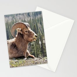 Smiling Bighorn Mountain Sheep Stationery Cards