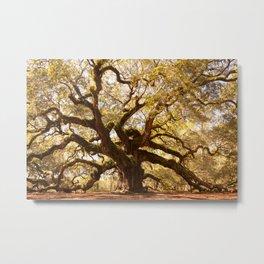 Angel Oak 5 Metal Print