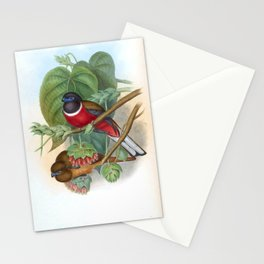 Malabar Trogon Gould17 Stationery Cards