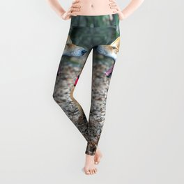Shiba Inu yelling in the woods Leggings