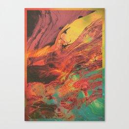 Feed your head III Canvas Print