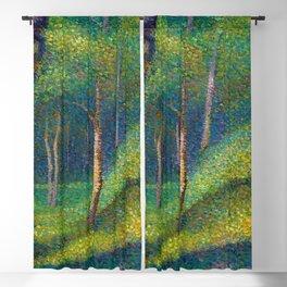 Maidenhair, Aspen, Ginkgo Biloba, & Birch Tree Forest landscape painting by Edmond Petitjean Blackout Curtain