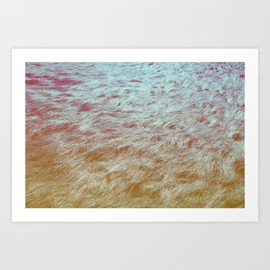 Channel Grass Art Print