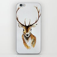 craftberrybush iPhone & iPod Skins featuring Buck - Watercolor by craftberrybush
