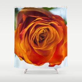 Firery Orange Rose Bloom Shower Curtain