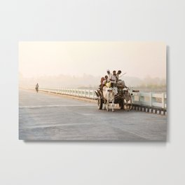 Sunrise in India, cows, travel photography  Metal Print