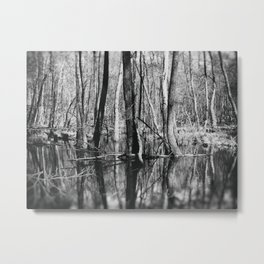 Before Spring Metal Print