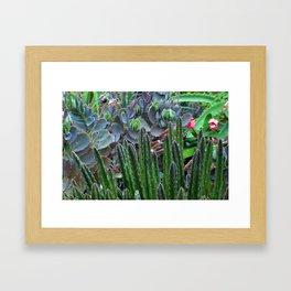 Arid Color Framed Art Print