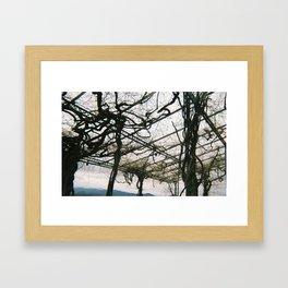 Naked DeVines Framed Art Print