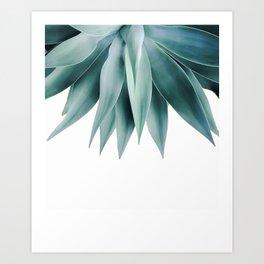 Agave fringe Art Print