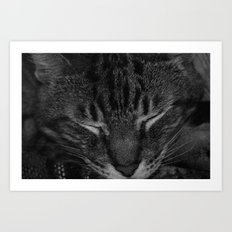 thor asleep Art Print
