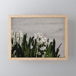 Hyacinth background Framed Mini Art Print