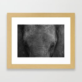 Elephant head - Africa wildlife Framed Art Print
