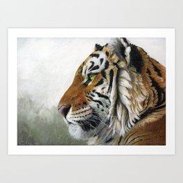 Tiger profile AQ1 Art Print