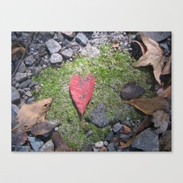 Heart Leaf Canvas Print