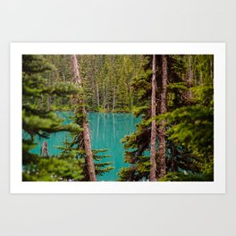 Through the Trees at Lesser Lake Garibaldi Art Print