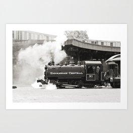 Savannah Train Art Print