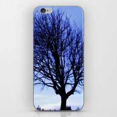 WinterMorning iPhone & iPod Skin
