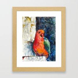 KingParrot Framed Art Print