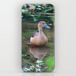Lesser Whistling Teal iPhone Skin