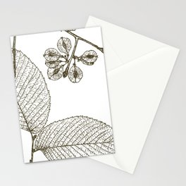 Leaves and Seeds Stationery Cards