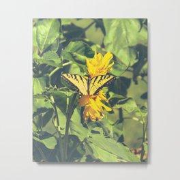Butterfly & Flowers Metal Print