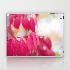 Autumn Splendor Laptop & iPad Skin