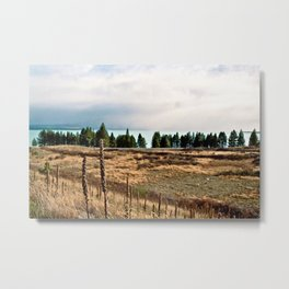 Lake Pukaki (3) Metal Print