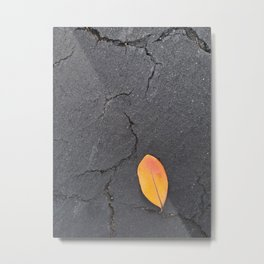Red Orange Leaf on Cracked Black Pavement Metal Print