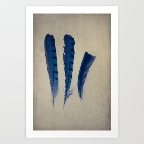 Feathers of Three Art Print