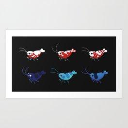 Red and blue shrimp Kunstdrucke