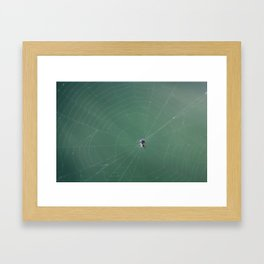 In the spider's net Framed Art Print