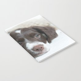 Brittany Puppy Notebook