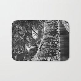 Ten Lakes Basin - Yosemite N.P. Bath Mat