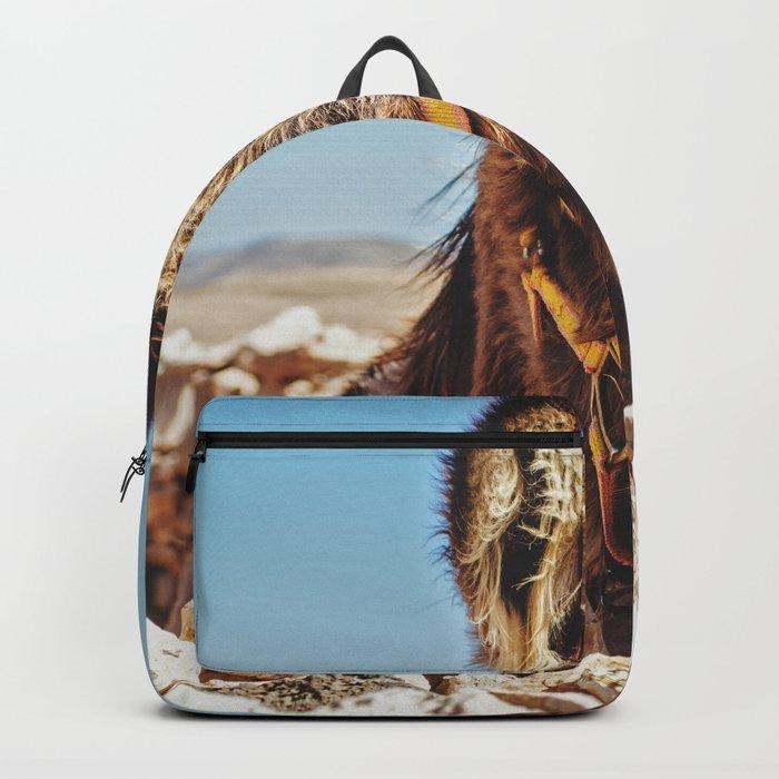 Donkey photo Backpack