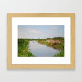 Ducks in the Creek Framed Art Print