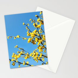 boom boom bloom Stationery Cards