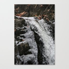 Still Waters Canvas Print
