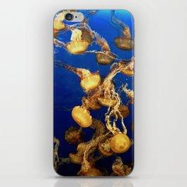 Jellyfish iPhone Skin
