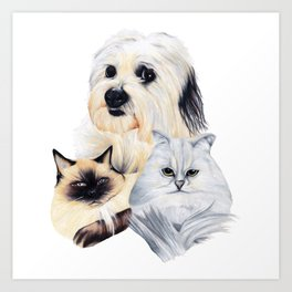 2 Cats and a Pup Art Print