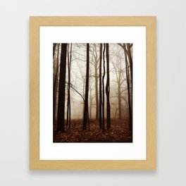 Depth in the Forest Framed Art Print