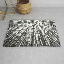 landscape photography  - forest,  black and white trees Rug