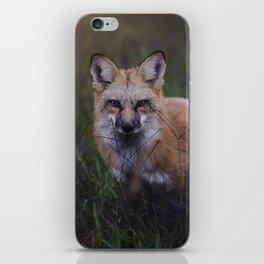 Vulpes iPhone Skin