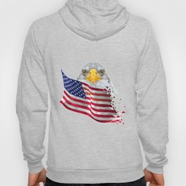 USA Flag with Eagle Low Poly art Hoody