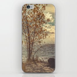 When You Start To Fall iPhone Skin