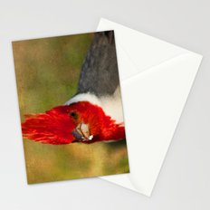 Red-crested Cardinal Stationery Cards