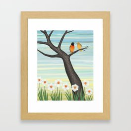 Orioles and daffodils Framed Art Print