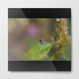 Spider Waits In Its Web For Customers Metal Print