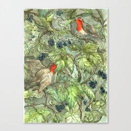 Robins in Blackberry Bush Canvas Print