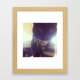 School Kitty Framed Art Print